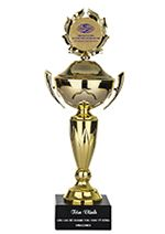 Cup Doanh nghiệp VINACONEX tiêu biểu